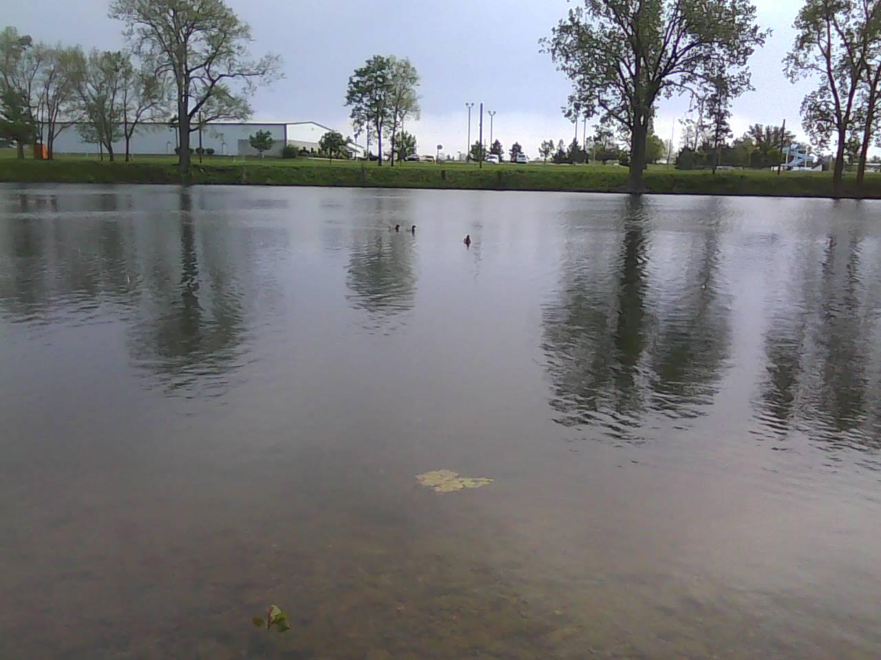 Buckeye lake 5 15 13 nwoaa for Buckeye lake fishing